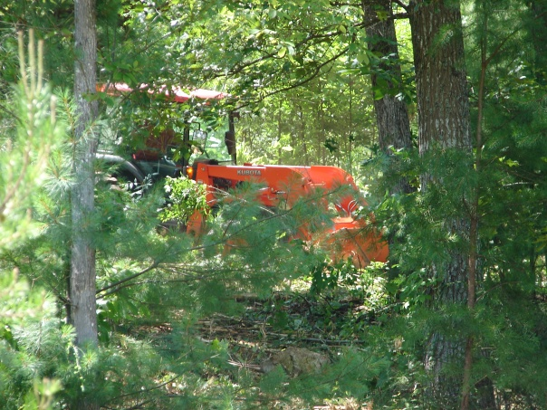 Tractor clearing trees and underbrush